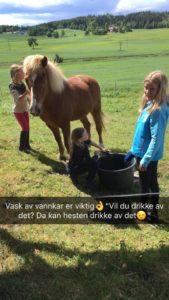 """""""Vil du drikke vannet selv, kan hestene drikke av det!"""" Rengjøring av vannkar pågår. Foto: Line Skofteby"""